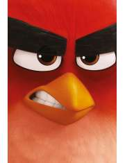 Angry Birds Red - plakat