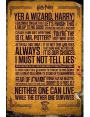 Harry Potter Teksty - plakat