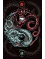 Smoki Yin Yang - plakat