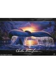 Lassen - Płetwa Wieloryba - plakat