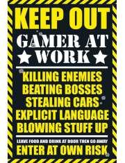 Gram Nie Przeszkadzać - Zakaz Wstępu - plakat