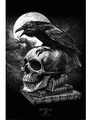 Alchemy Kruk i Czaszka - plakat