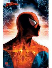 SpiderMan Protector Of The City - plakat