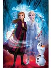 Kraina Lodu 2 Frozen Spirit - plakat