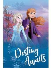 Kraina Lodu 2 Frozen Przeznaczenie - plakat