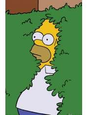 The Simpsons Homer Bush - plakat