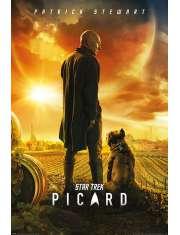 Star Trek Picard - plakat
