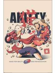 Ilustrata Akitty - plakat