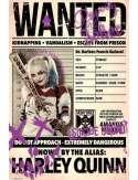 Legion Samobójców Wanted Harley Quinn - plakat