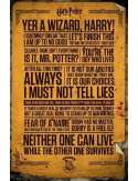 Harry Potter Teksty - plakat