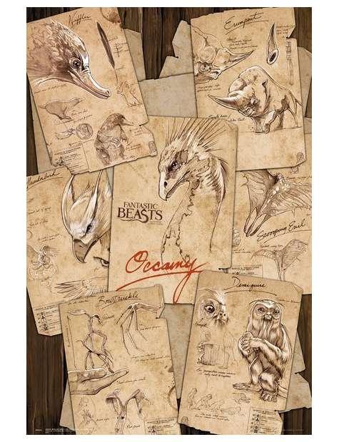 Fantastyczne zwierzęta i jak je znaleźć Notatki - plakat