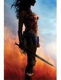 DC Comics Wonder Woman - plakat