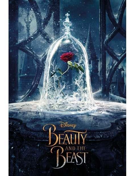 Piękna i Bestia Róża - plakat