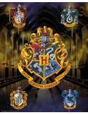 Harry Potter Herby Domów - plakat