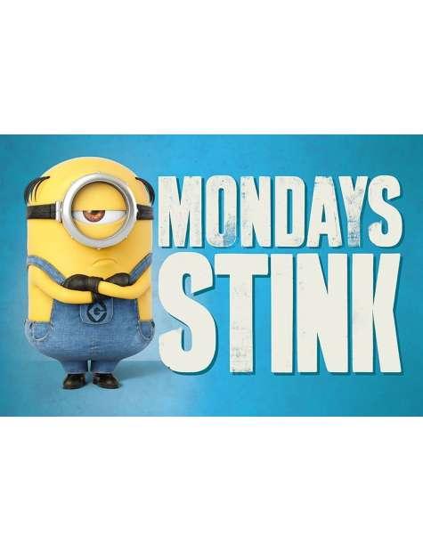 Gru, Dru i Minionki Mondays Stink - plakat bajkowy