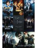 Harry Potter Kolekcja - plakat