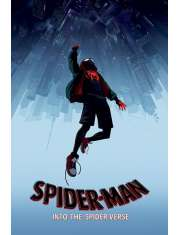 SpiderMan Uniwersum - plakat
