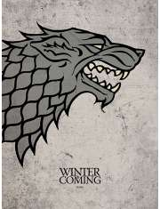 Gra o Tron - Game of Thrones Stark - plakat premium