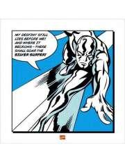 Silver Surfer My Destiny - plakat premium