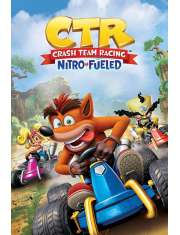 Crash Team Racing - plakat