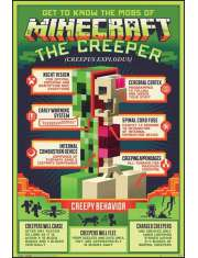 Minecraft Creepy Behaviour - plakat
