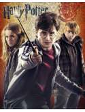 Harry Potter 7 Trio - plakat