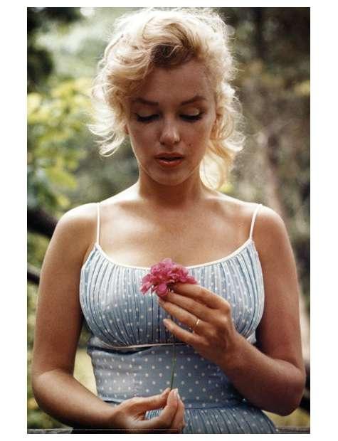 Marilyn Monroe Flower - plakat