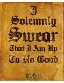 Harry Potter I Solomnly Swear - plakat