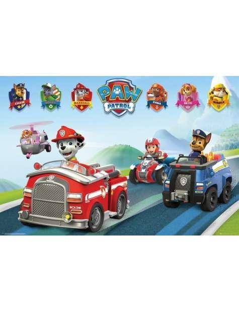 Psi Patrol Pojazdy - plakat