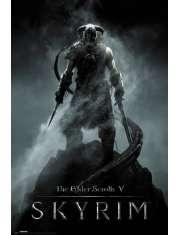 The Elder Scrolls V Skyrim Dragonborn - plakat